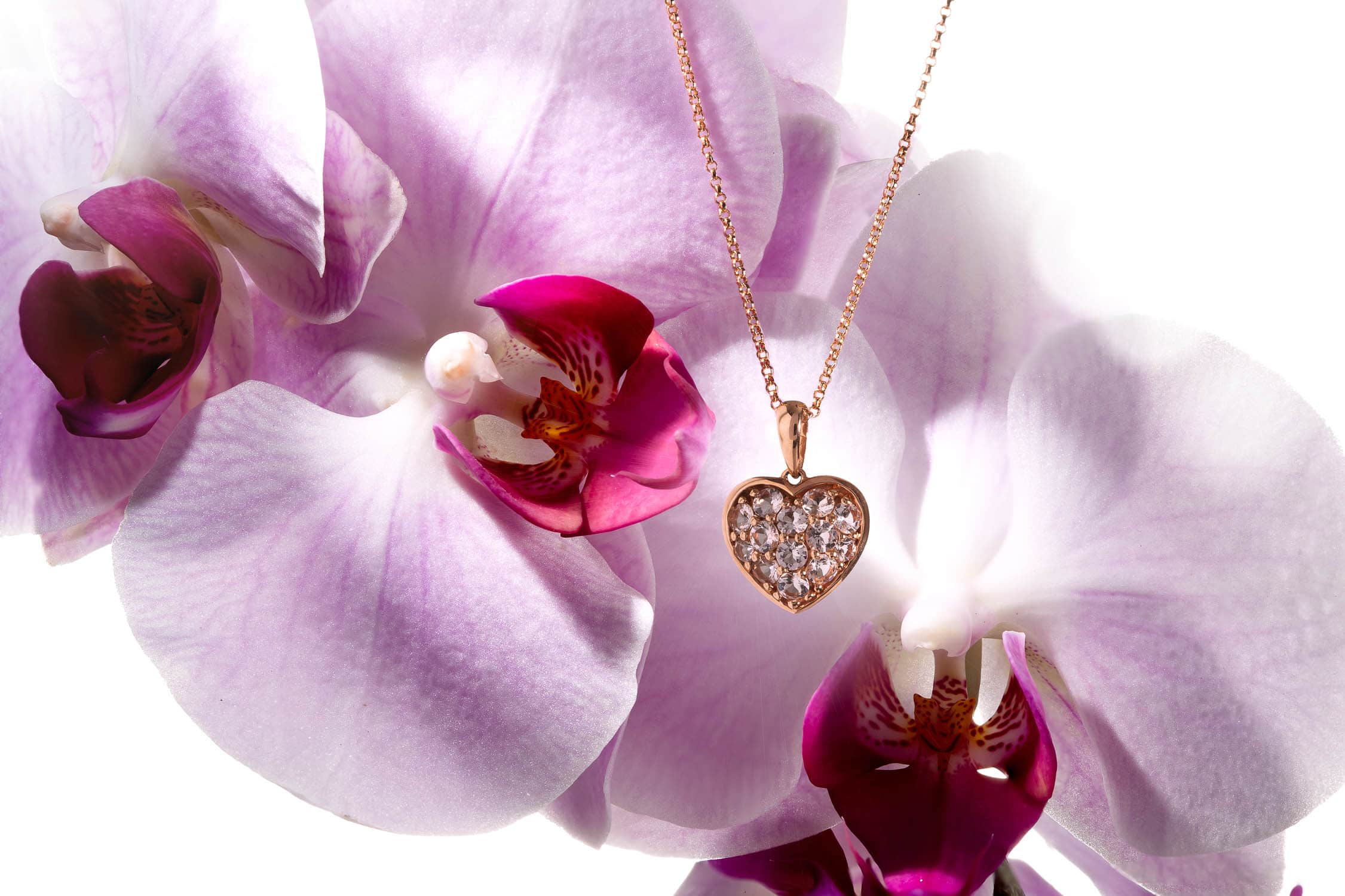Gold Pendant and The Orchid