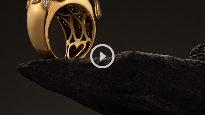 Jewelry product video